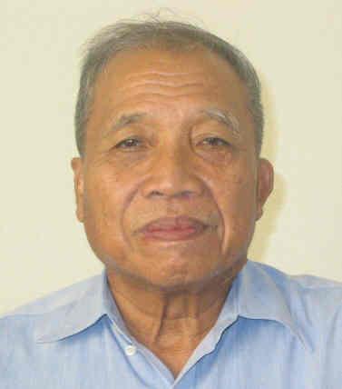 Ir. Budiman Notoatmodjo, M.Sc., Ph.D.